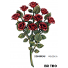BOUQUET DE ROSES en couleur livré chez vous FRANCO de PORT*
